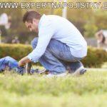 úrazové pojištění dětí chlapec se zranil při kopané reference jarmila mlýnková úraz